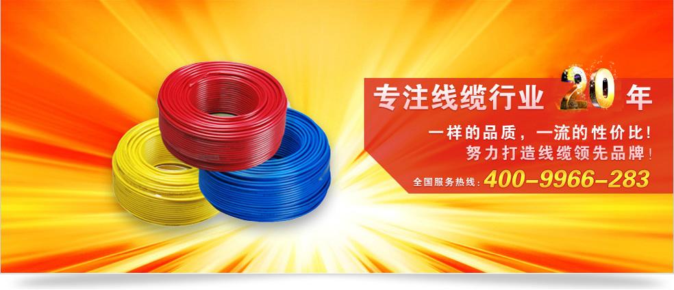 杭州中策电线电缆 专注线缆行业18年