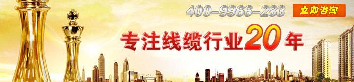 杭州中策电线电缆 加盟商首选品牌 荣誉资质齐全