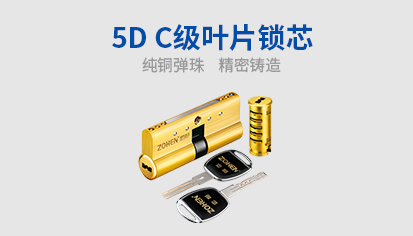 5D C级叶片锁芯